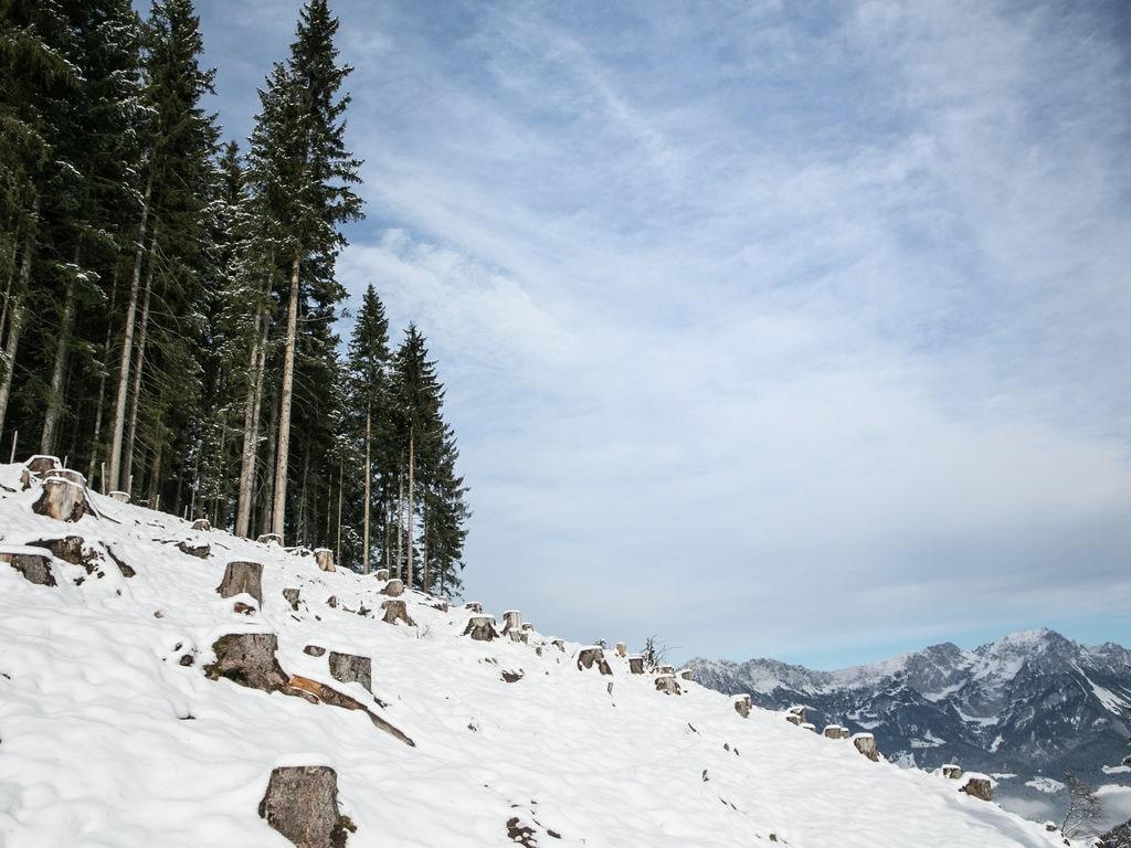 Appartement de vacances Koglbauer (438402), Söll, Wilder Kaiser, Tyrol, Autriche, image 32