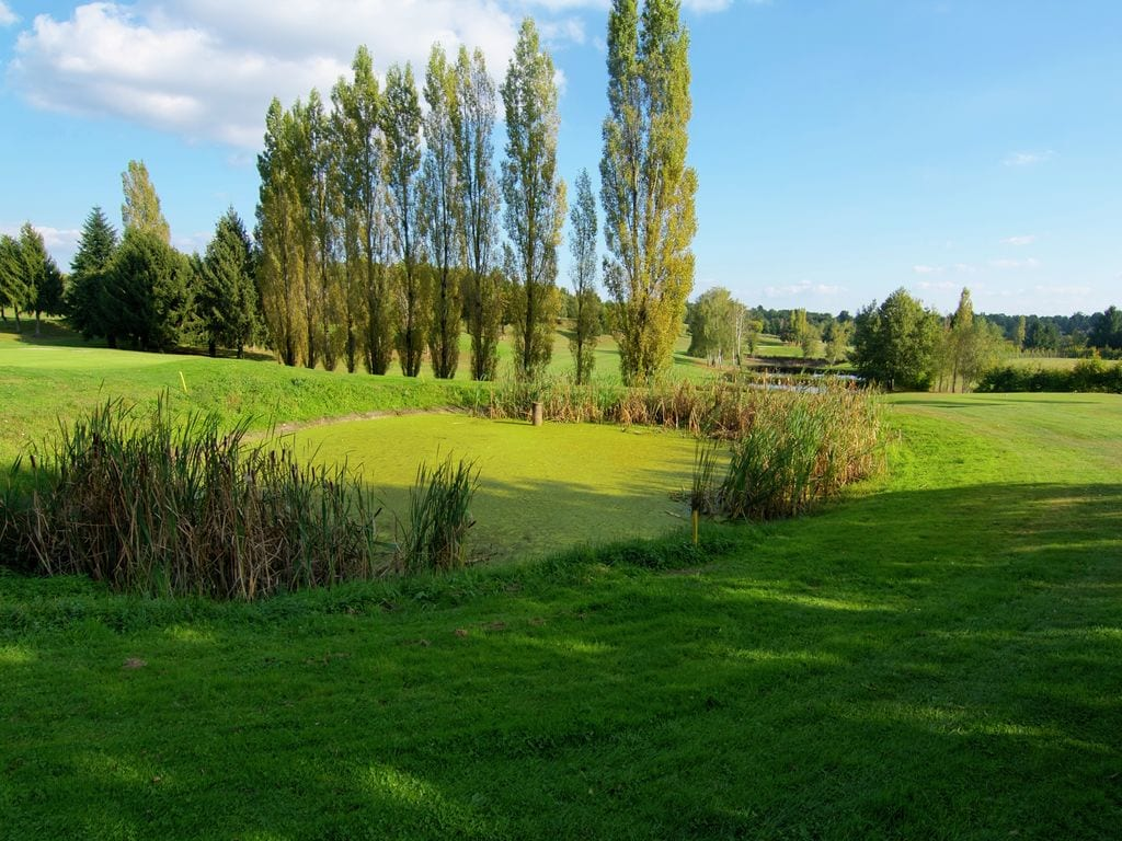 Ferienhaus Geräumiges Ferienhaus auf einem schönen Grundstück mit einem beheizten Pool. (465001), Cherves Châtelars, Charente, Poitou-Charentes, Frankreich, Bild 24