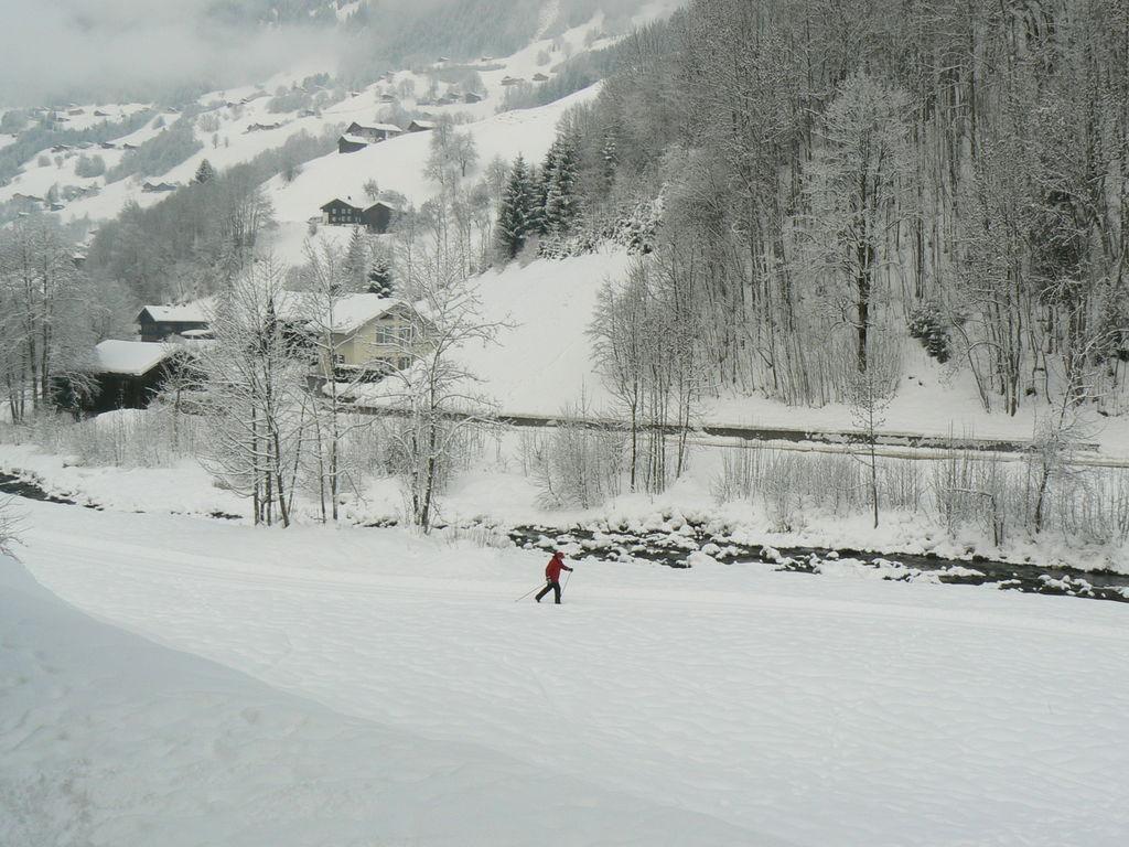 Appartement de vacances Matta (444701), Silbertal, Montafon, Vorarlberg, Autriche, image 27