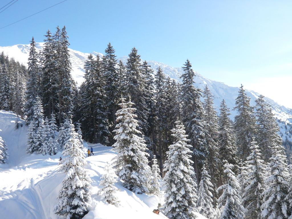 Appartement de vacances Matta (444701), Silbertal, Montafon, Vorarlberg, Autriche, image 28