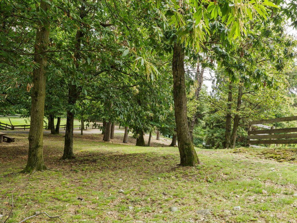Ferienwohnung Gemütlicher Bauernhof in Verbania mit Garten (456975), Pallanza, Lago Maggiore (IT), Piemont, Italien, Bild 25