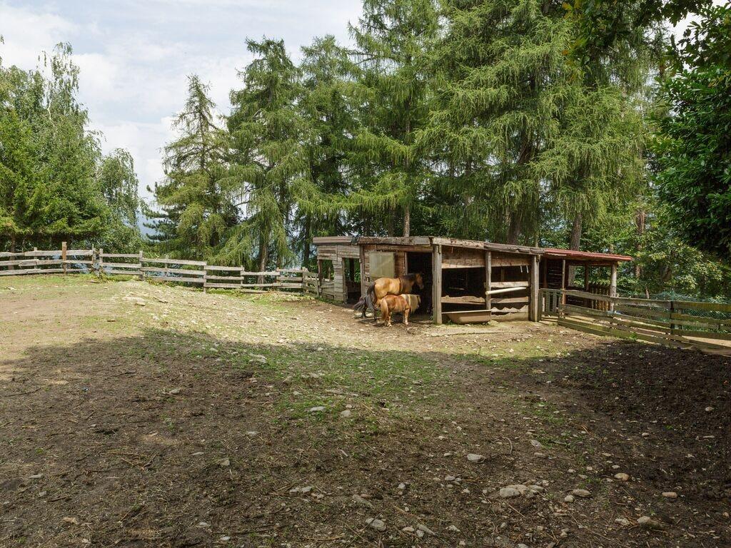 Ferienwohnung Gemütlicher Bauernhof in Verbania mit Garten (456975), Pallanza, Lago Maggiore (IT), Piemont, Italien, Bild 33