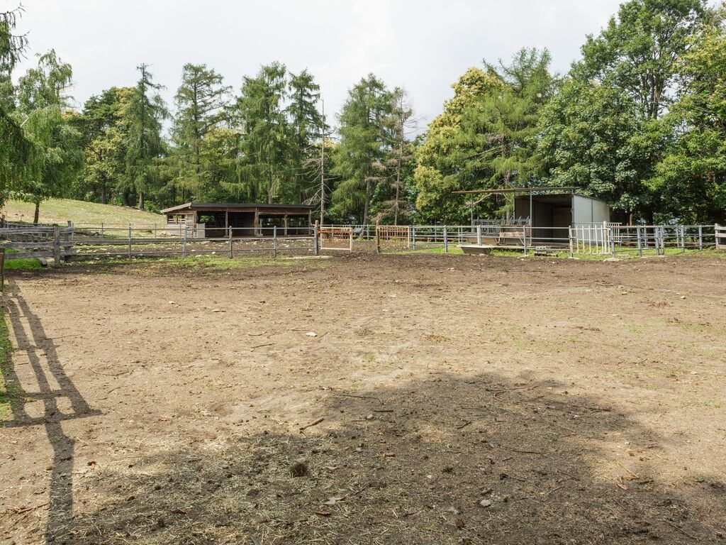Ferienwohnung Gemütlicher Bauernhof in Verbania mit Garten (456975), Pallanza, Lago Maggiore (IT), Piemont, Italien, Bild 34