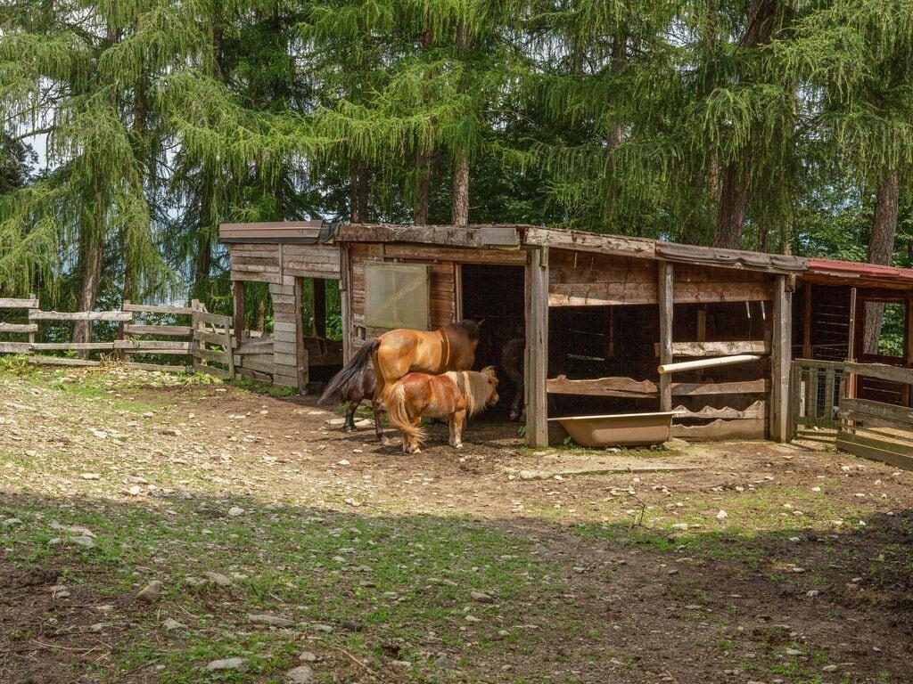Ferienhaus Geräumiger Bauernhof in Verbania mit Garten (456979), Pallanza, Lago Maggiore (IT), Piemont, Italien, Bild 29
