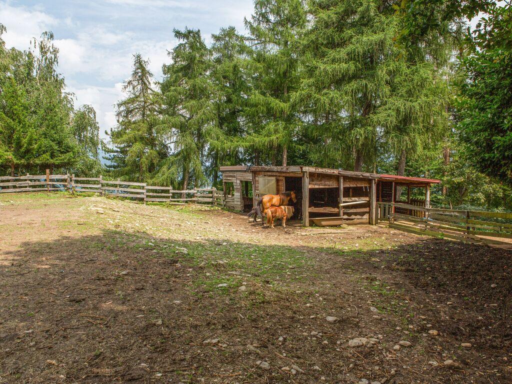Ferienhaus Geräumiger Bauernhof in Verbania mit Garten (456979), Pallanza, Lago Maggiore (IT), Piemont, Italien, Bild 30