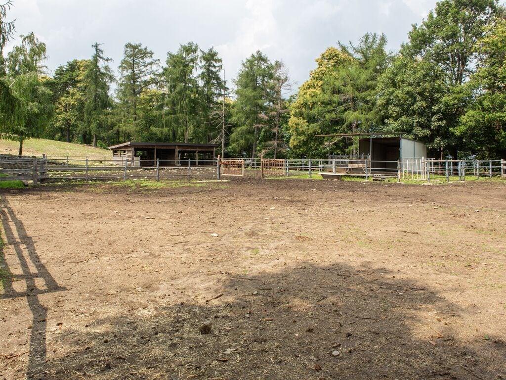 Ferienhaus Geräumiger Bauernhof in Verbania mit Garten (456979), Pallanza, Lago Maggiore (IT), Piemont, Italien, Bild 31