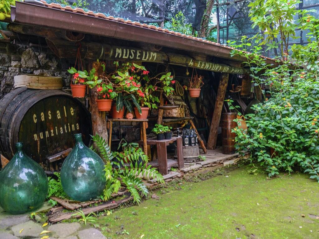 Ferienhaus Boutique-Landhaus in Sorrent mit malerischer Aussicht (470301), Sorrento (IT), Amalfiküste, Kampanien, Italien, Bild 27