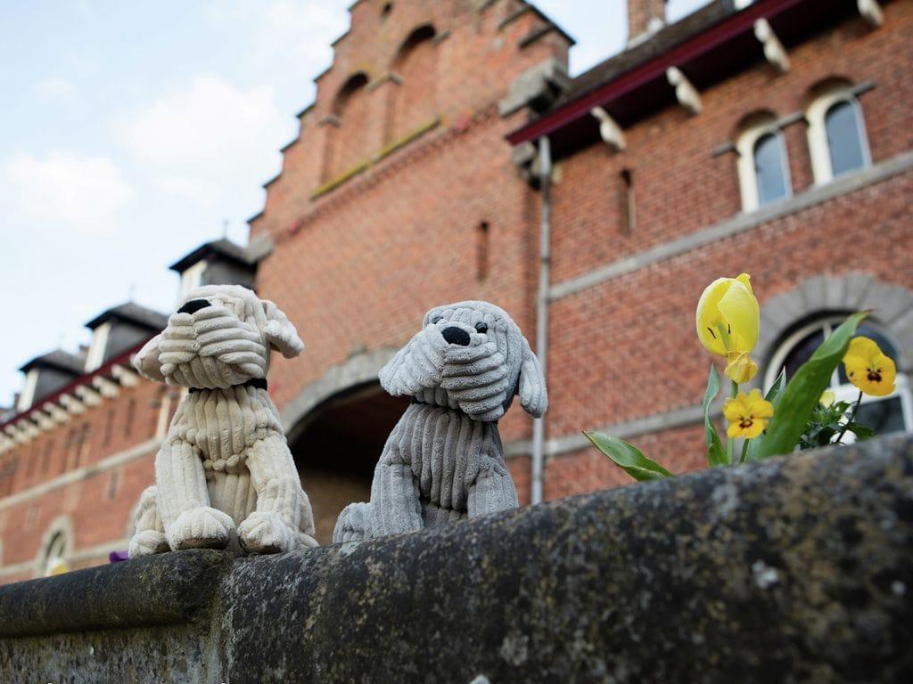 Ferienhaus La Ferme (483104), Beuzet, Namur, Wallonien, Belgien, Bild 38