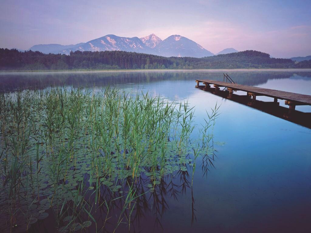 Appartement de vacances am Drauradweg (477304), Neuhaus (Klopeiner See), Lac Klopein, Carinthie, Autriche, image 31