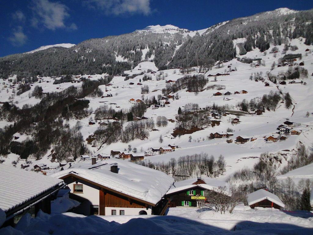 Appartement de vacances Jacquelin (478613), Silbertal, Montafon, Vorarlberg, Autriche, image 19