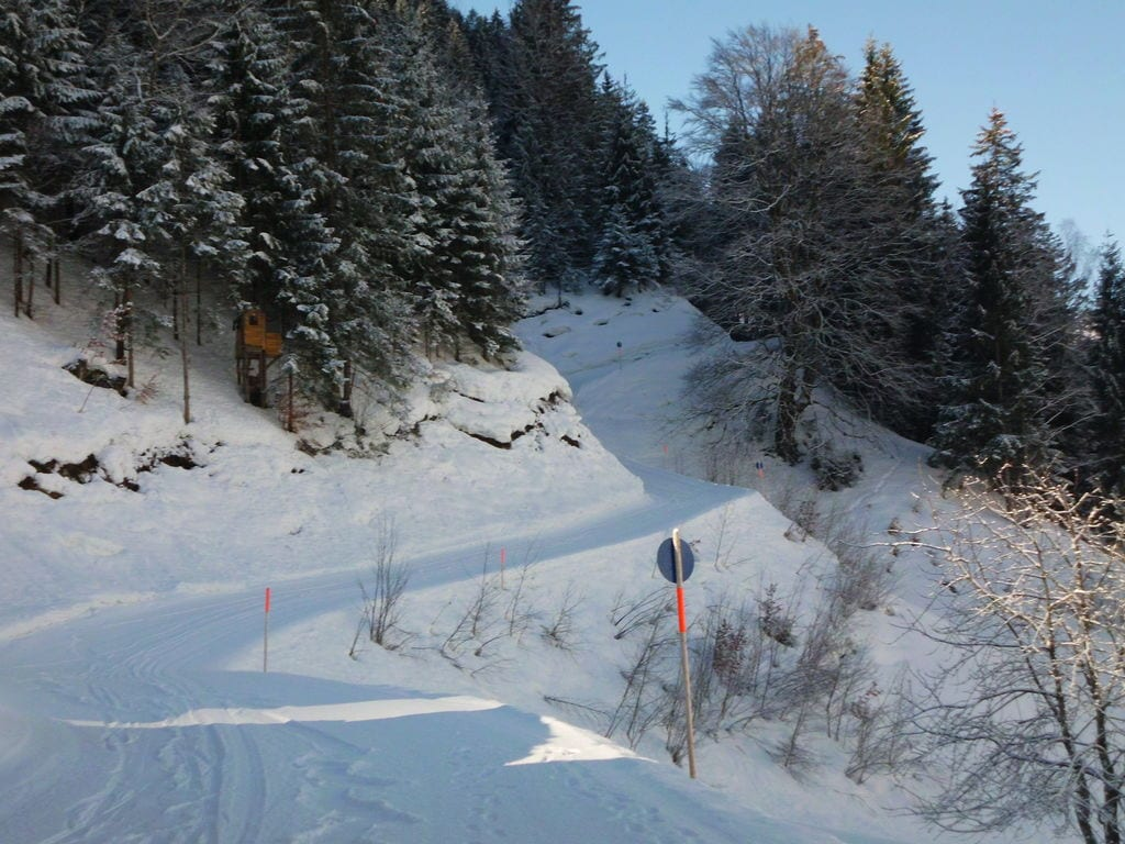 Appartement de vacances Jacquelin (478613), Silbertal, Montafon, Vorarlberg, Autriche, image 18