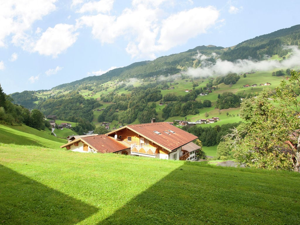 Appartement de vacances Jacquelin (478613), Silbertal, Montafon, Vorarlberg, Autriche, image 15