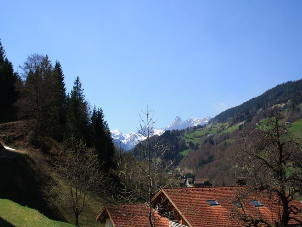 Appartement de vacances Jacquelin (478613), Silbertal, Montafon, Vorarlberg, Autriche, image 23