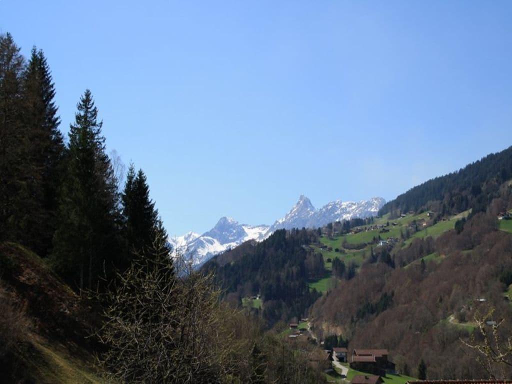 Appartement de vacances Jacquelin (478613), Silbertal, Montafon, Vorarlberg, Autriche, image 13