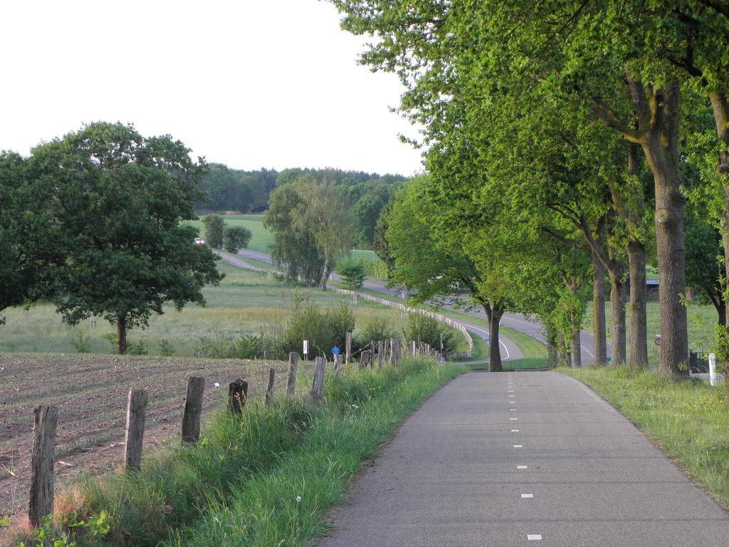 Ferienwohnung Ruhiges Bauernhaus in Groesbeek mit Terrasse (488597), Groesbeek, Arnheim-Nimwegen, Gelderland, Niederlande, Bild 26