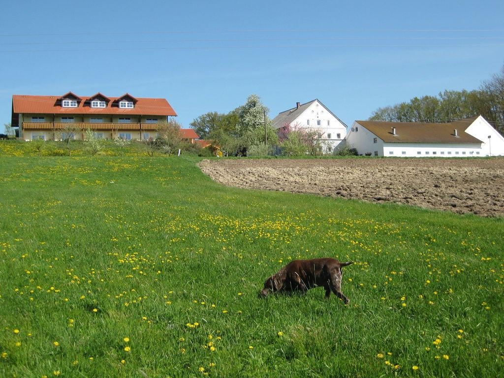 Ferienwohnung Am Ferienhof (487837), Rotthalmünster, Bayerisches Golf- und Thermenland, Bayern, Deutschland, Bild 3
