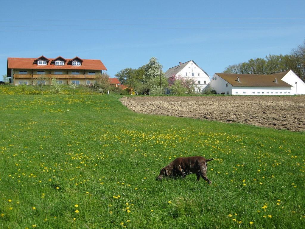 Ferienwohnung Am Ferienhof (487839), Rotthalmünster, Bayerisches Golf- und Thermenland, Bayern, Deutschland, Bild 18