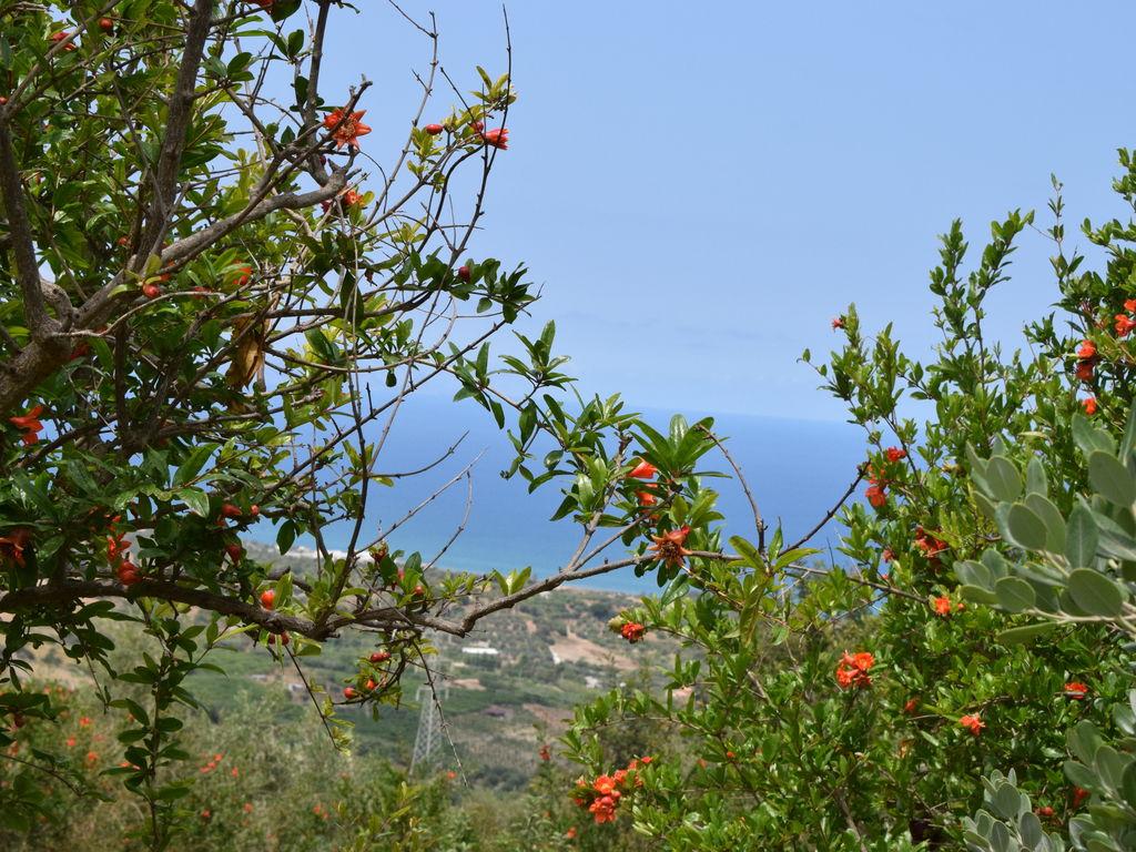 Holiday house Lavanda (494246), Collesano, Palermo, Sicily, Italy, picture 33