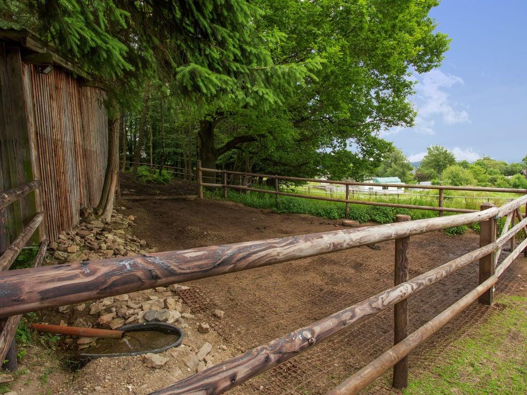 Ferienhaus Luxuriöser Bauernhof in Hellenthal nahe dem Skigebiet (494033), Hellenthal, Eifel (Nordrhein Westfalen) - Nordeifel, Nordrhein-Westfalen, Deutschland, Bild 17