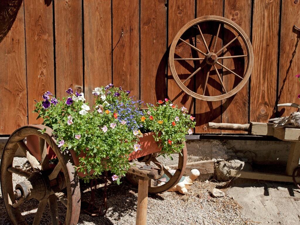Appartement de vacances Winklerhof (495412), Oetz, Ötztal, Tyrol, Autriche, image 18