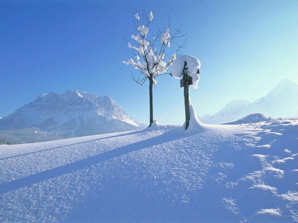 Ferienwohnung Gemütliche Ferienwohnung in Lermoos mit Skilift in der Nähe (496154), Lermoos, Tiroler Zugspitz Arena, Tirol, Österreich, Bild 18