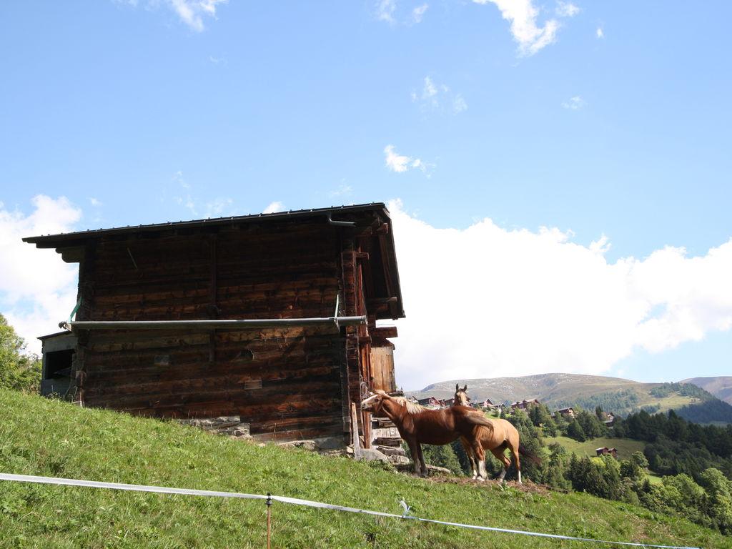 Appartement de vacances Schöne Ferienwohnung im Bellwald mit Balkon (615843), Bellwald, Aletsch - Conches, Valais, Suisse, image 13