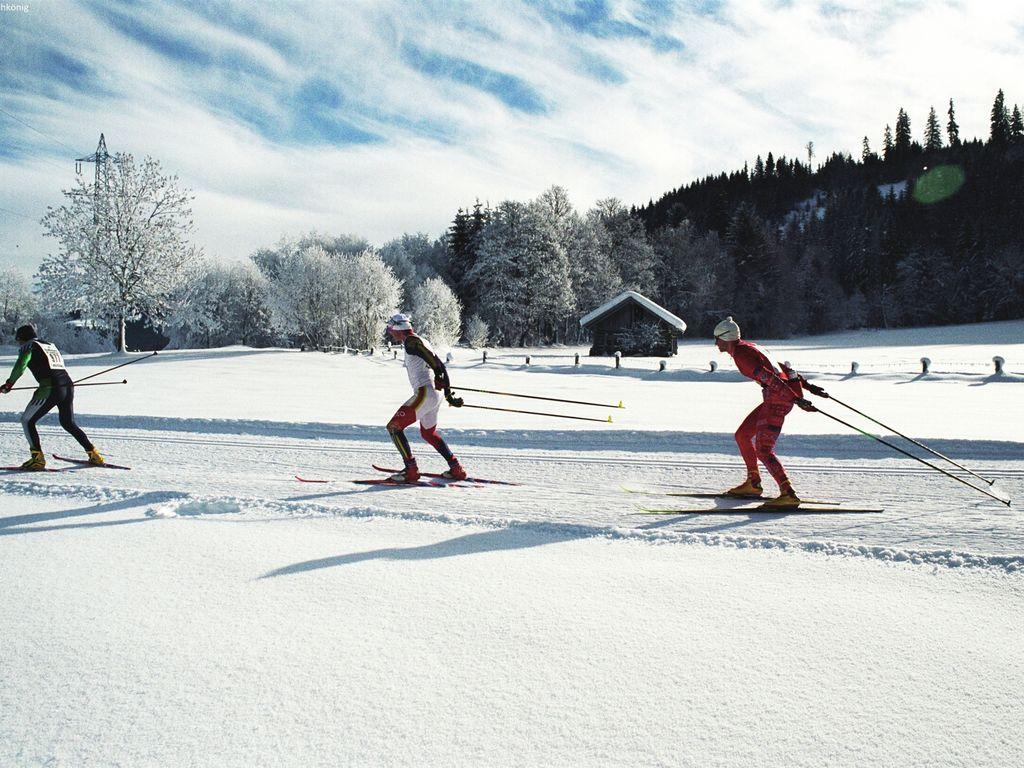 Holiday house Feriendorf Chalet Type A (499677), Hohentauern, Murtal, Styria, Austria, picture 29