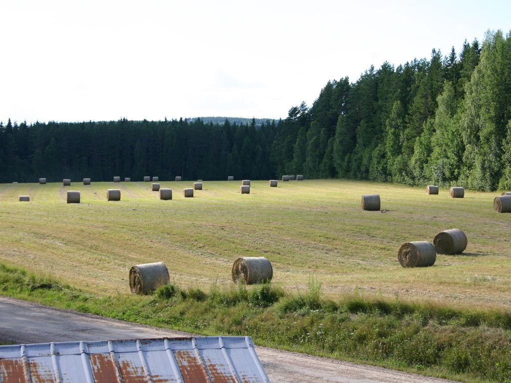 Ferienhaus Freistehendes Ferienhaus in Waldnähe in Munkfors (561034), Munkfors, Värmlands län, Mittelschweden, Schweden, Bild 7
