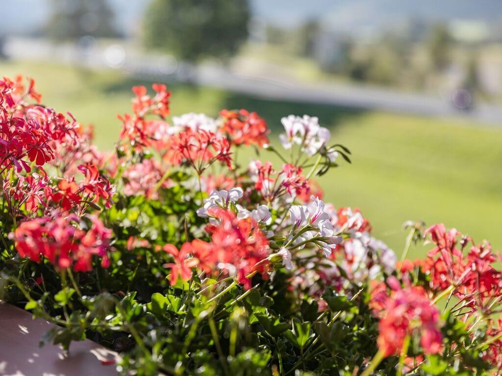 Ferienwohnung Schöne Ferienwohnung mit Terrasse in Salzburg (551061), Hollersbach im Pinzgau, Pinzgau, Salzburg, Österreich, Bild 20
