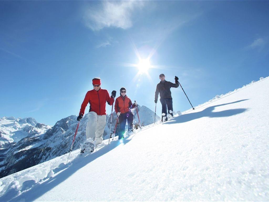 Ferienwohnung Luxery Salzkammergut Chalet C (580241), Obertraun, Salzkammergut, Oberösterreich, Österreich, Bild 24