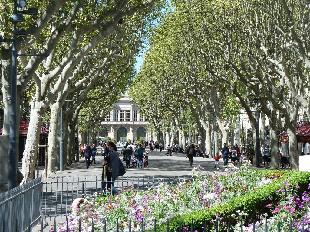 Ferienhaus Au coeur du Languedoc (607560), Lignan sur Orb, Hérault Binnenland, Languedoc-Roussillon, Frankreich, Bild 33