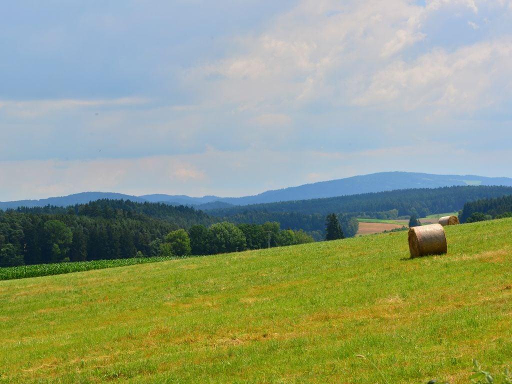 Ferienwohnung Bayerischer Wald (620156), Zandt, Bayerischer Wald, Bayern, Deutschland, Bild 14
