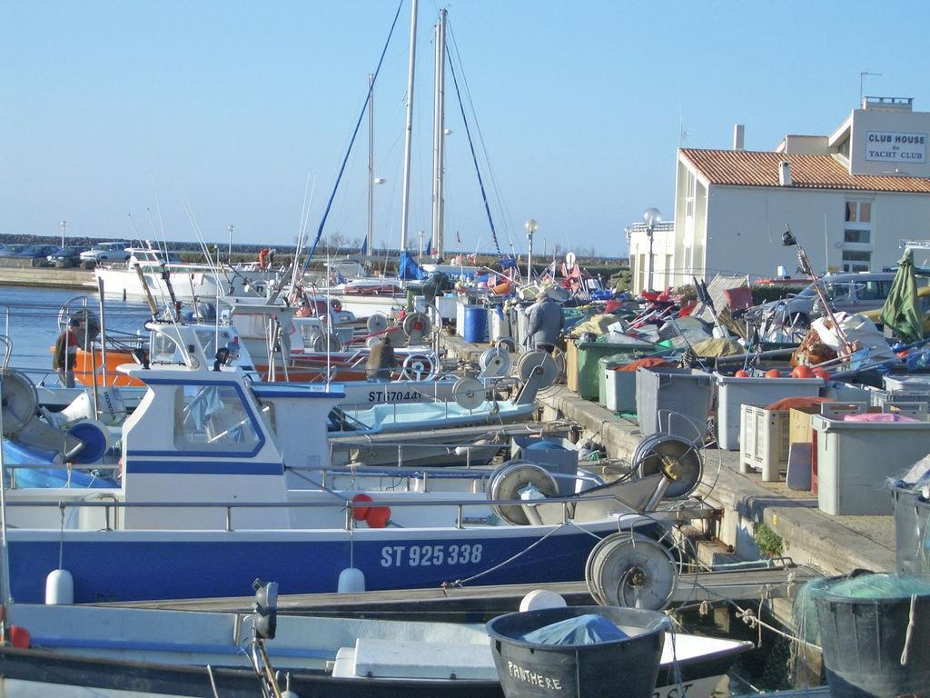 Ferienhaus Calme et vignes près de Montpellier (620480), Pignan, Mittelmeerküste Hérault, Languedoc-Roussillon, Frankreich, Bild 32