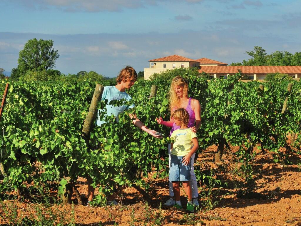 Ferienwohnung Le Chateau de Jouarres 5 (618540), Azille, Aude Binnenland, Languedoc-Roussillon, Frankreich, Bild 29