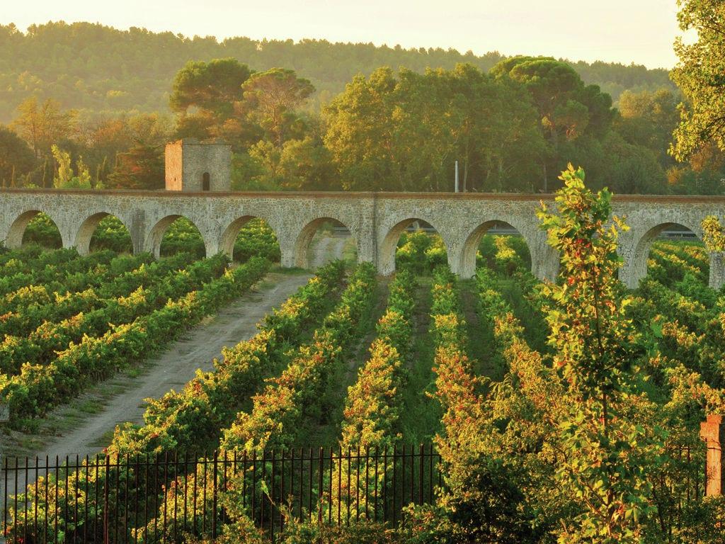 Ferienwohnung Le Chateau de Jouarres 2 (618528), Azille, Aude Binnenland, Languedoc-Roussillon, Frankreich, Bild 26