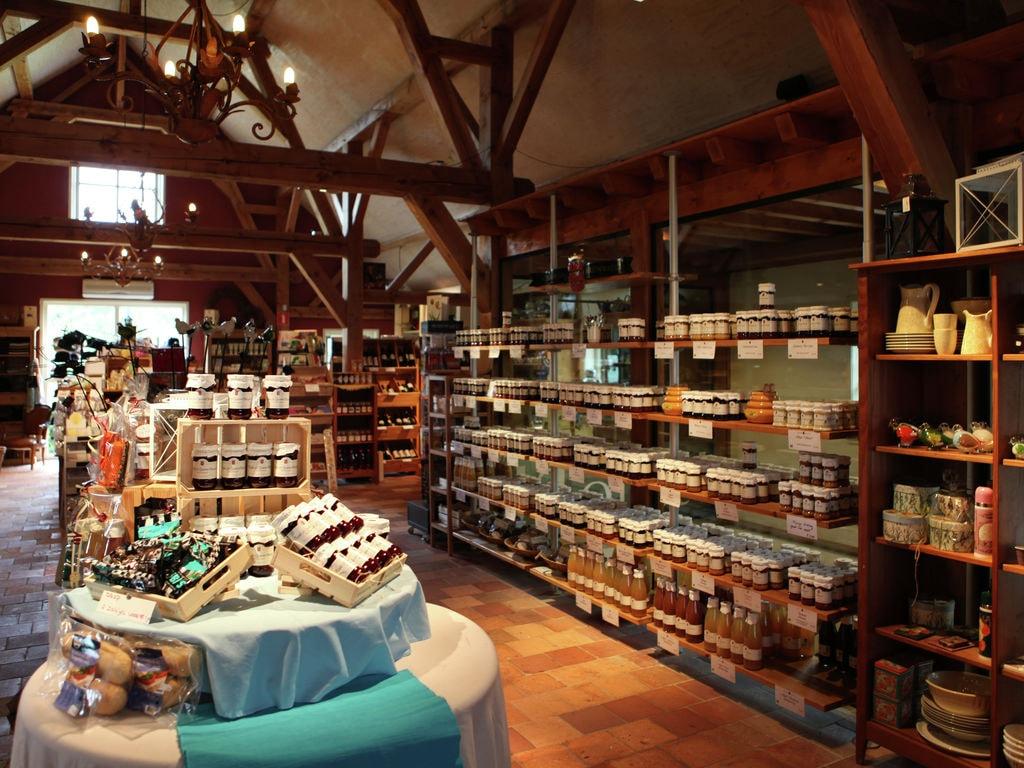 Ferienhaus Denkmalgeschütztes Ferienhaus in Beesd in Waldnähe (645012), Beesd, Rivierenland, Gelderland, Niederlande, Bild 36