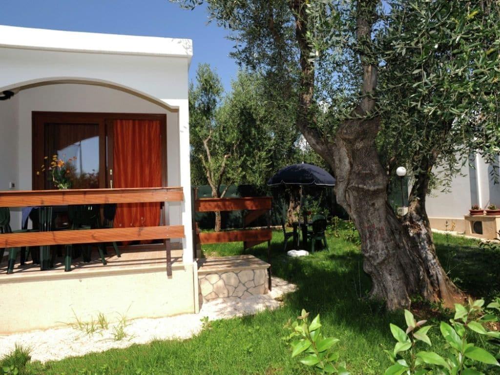 Ferienhaus Komfortabler Bungalow in einem schönen Nationalpark (651013), Volturara Appula, Foggia, Apulien, Italien, Bild 2