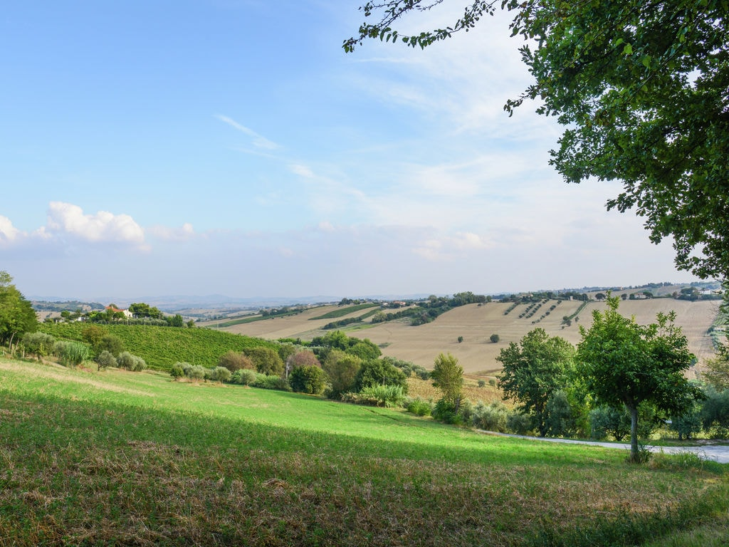 Ferienwohnung Paola (629159), Morro d'Alba, Ancona, Marken, Italien, Bild 22