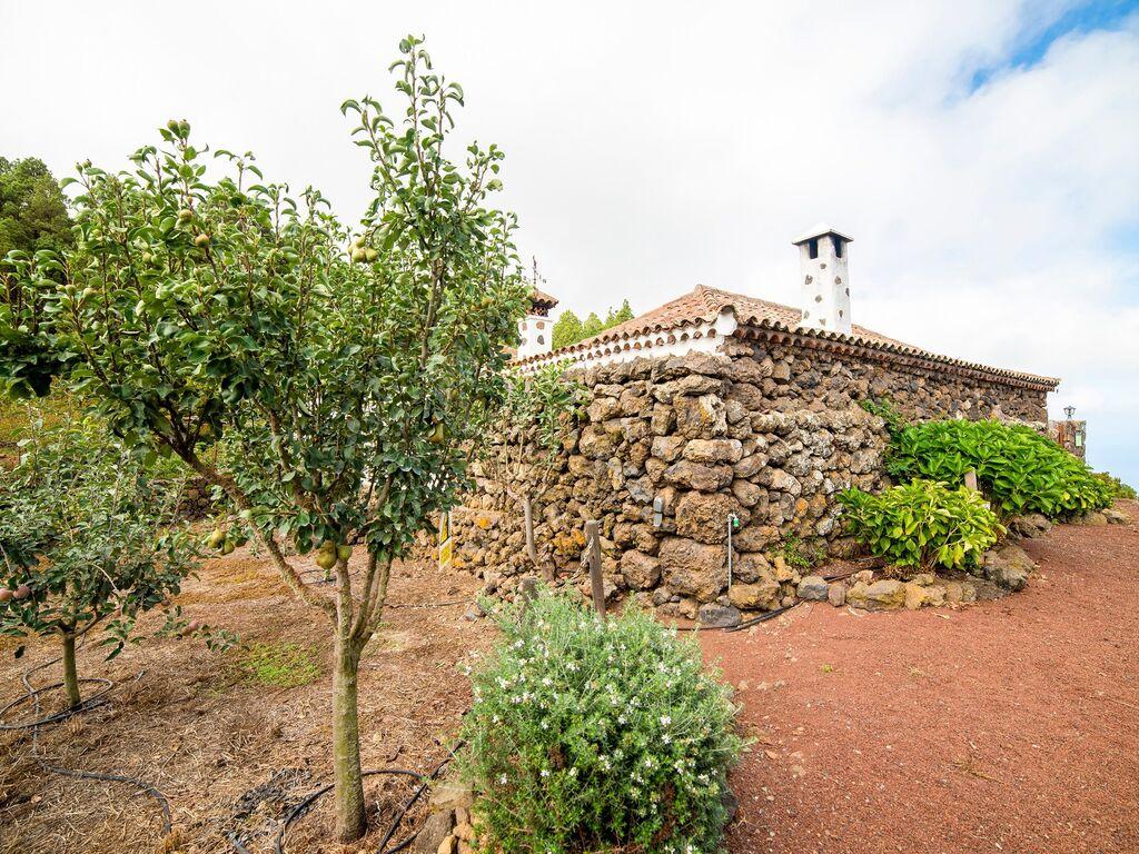 Holiday house Geräumiges Ferienhaus in El Amparo inmitten von Wald (2134991), Icod de los Vinos, Tenerife, Canary Islands, Spain, picture 27
