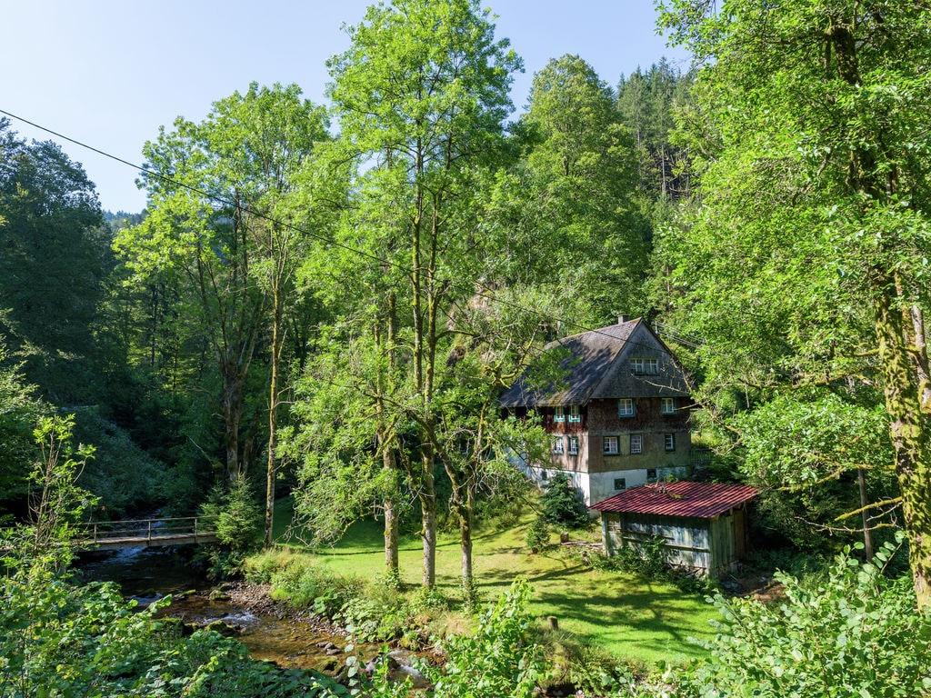 Ferienwohnung Urlaub im Schwarzwald (627662), Furtwangen, Schwarzwald, Baden-Württemberg, Deutschland, Bild 25