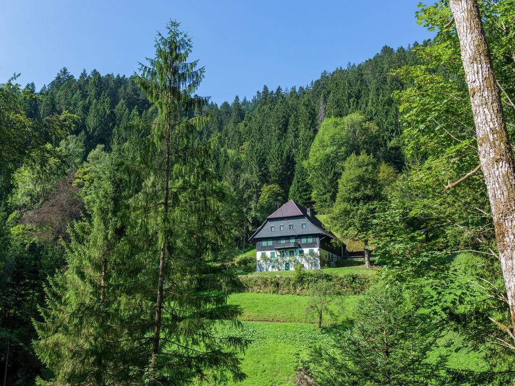 Ferienwohnung Urlaub im Schwarzwald (627662), Furtwangen, Schwarzwald, Baden-Württemberg, Deutschland, Bild 27