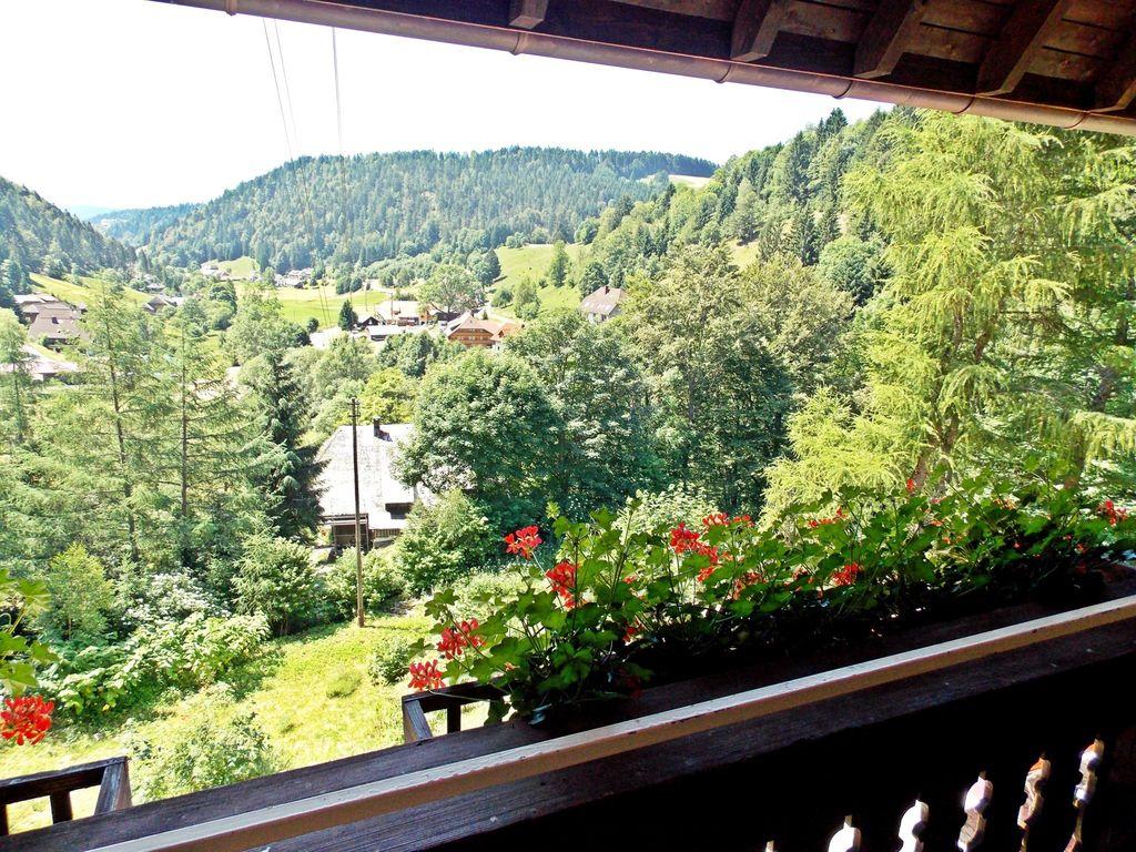 Ferienhaus Ruhiges Ferienhaus im Schwarzwald mit eigener Terrasse (255390), Todtmoos, Schwarzwald, Baden-Württemberg, Deutschland, Bild 5
