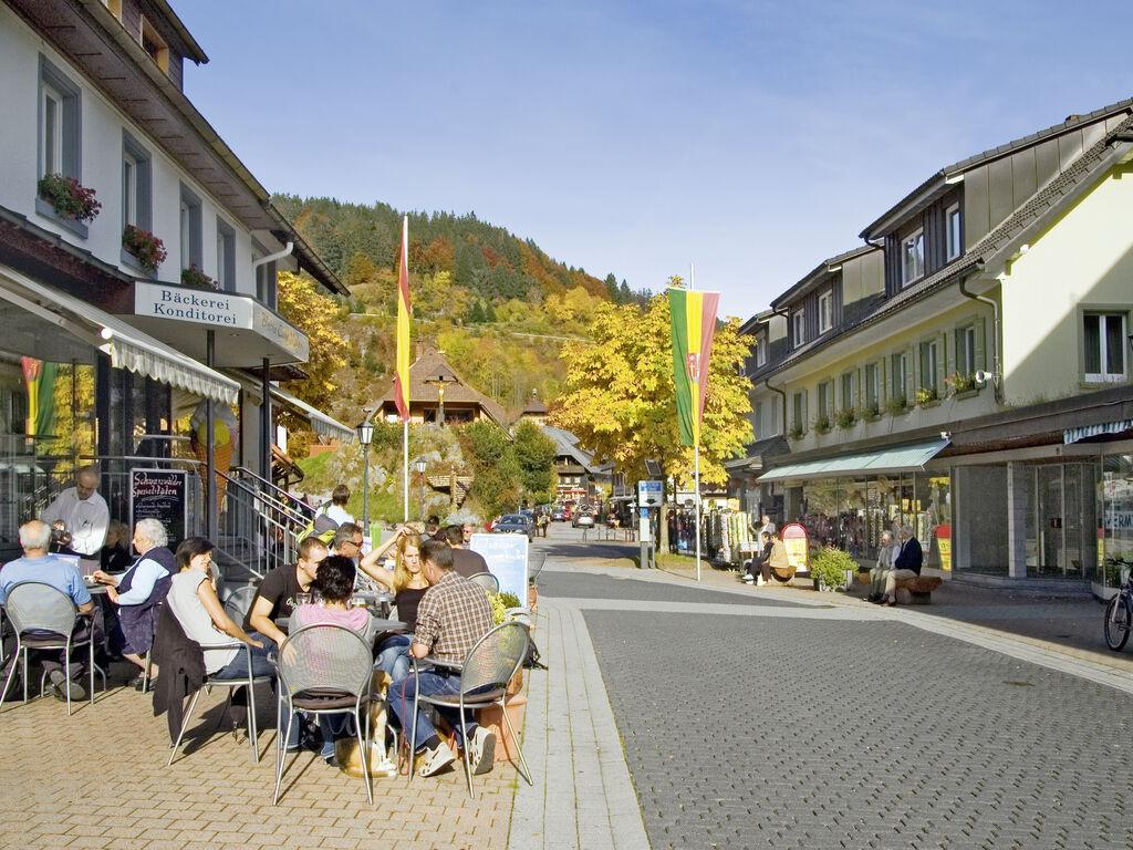 Ferienhaus Ruhiges Ferienhaus im Schwarzwald mit eigener Terrasse (255390), Todtmoos, Schwarzwald, Baden-Württemberg, Deutschland, Bild 35