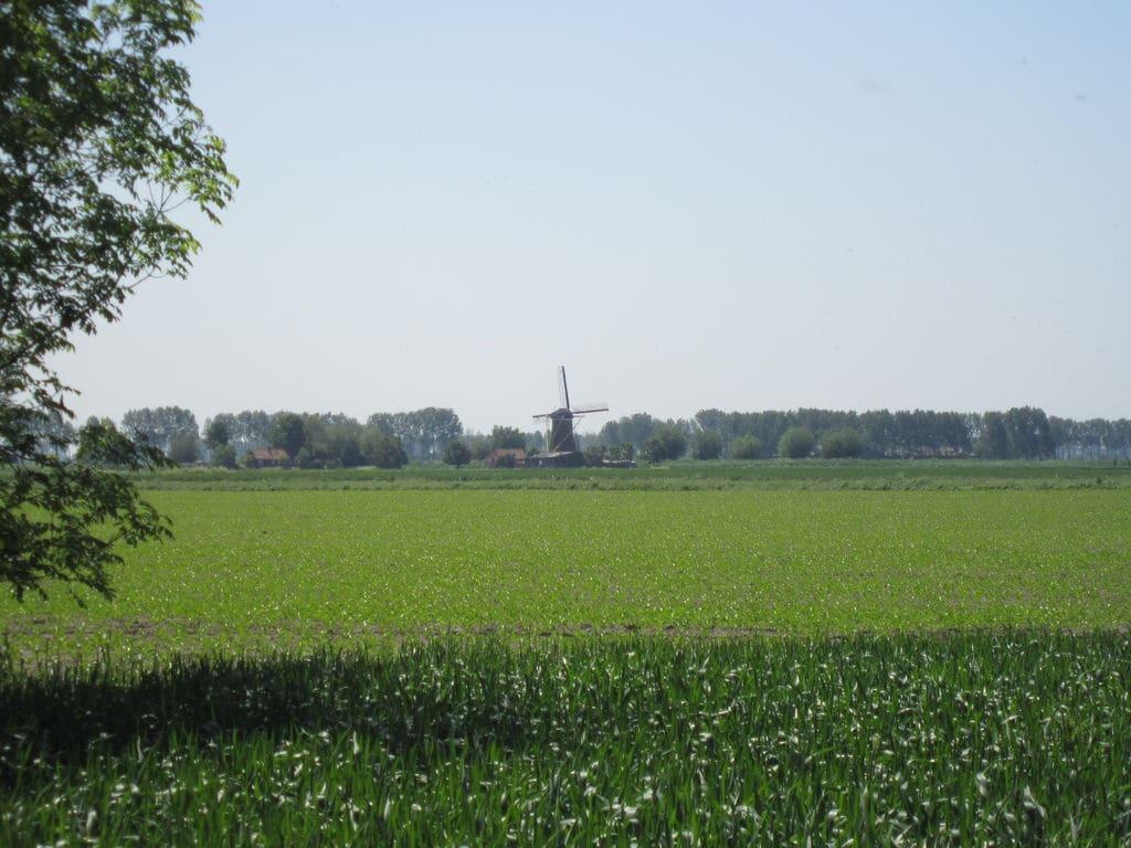 Ferienhaus Modernes Ferienhaus mit Kamin in Zuidzande (224437), Zuidzande, , Seeland, Niederlande, Bild 34