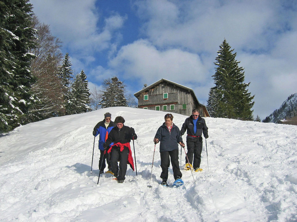 Maison de vacances Erath (642346), Au (AT), Bregenzerwald, Vorarlberg, Autriche, image 23