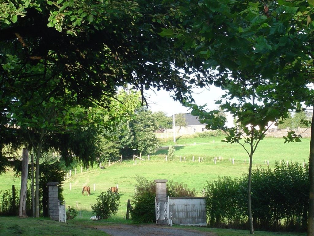 Ferienhaus in Monceau-en-Ardenne mit eingezäuntem Garten (1001123), Bièvre, Namur, Wallonien, Belgien, Bild 31