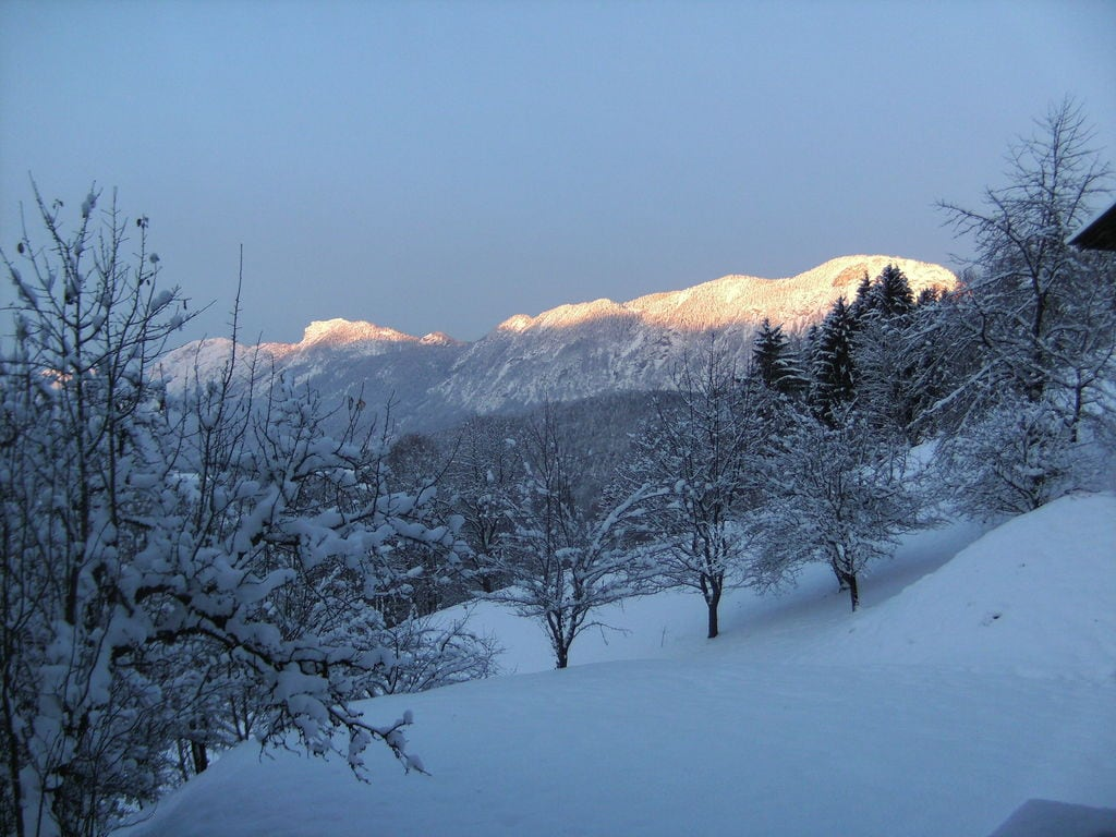 Ferienwohnung Köllnberg (650893), Schwoich, Kufstein, Tirol, Österreich, Bild 24