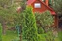 Meer info: Vakantiehuizen  Charming cottage Kopalino