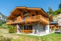 Meer info: Vakantiehuizen  Lodge Elise Wald-Königsleiten