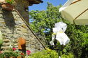 Meer info: Vakantiehuizen  Casa Bianca Castelfranco di Sopra